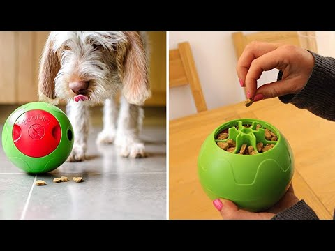 11 SMART GADGETS FOR YOUR PETS